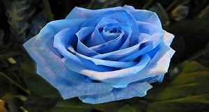 """Die Blaue Blume: """"You're just saying that because you're in love with Yasmin Bleeth!"""""""