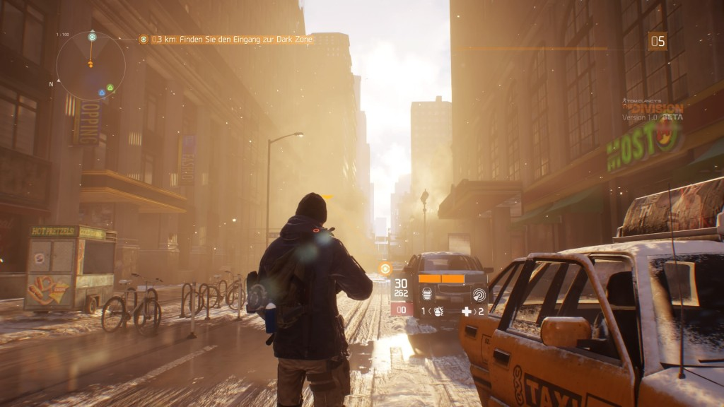 Tom Clancy's The Division™ Beta Sunflair